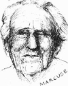 ink portrait of Herbert Marcuse
